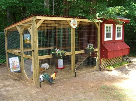 Backyard Chicken Coop Designs by Chicken Coops Important Tips For Beginners