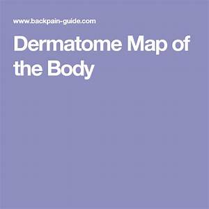 Dermatome Map Of The Body