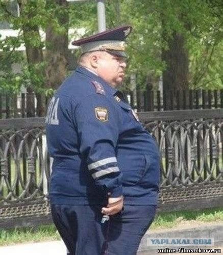Fat Cop Eating Donuts