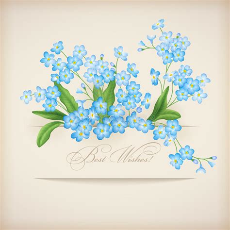 blue spring flowers forget   greeting card stock
