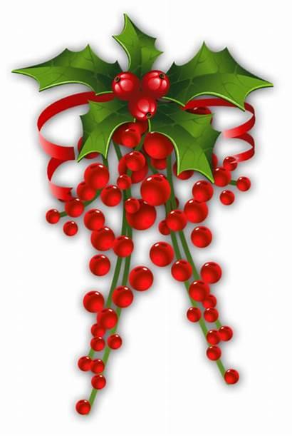 Mistletoe Decor Clipart Christmas Transparent Yopriceville