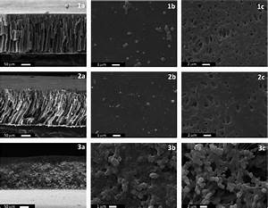 Sem Microimages Of Pes Membrane Prepared By Phase