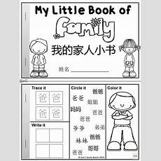 Mandarin Essay About Family