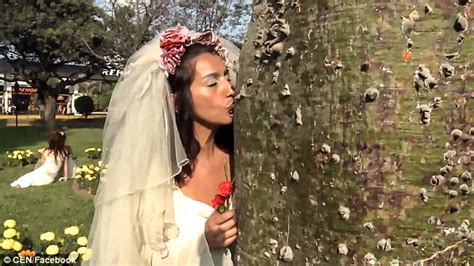 brides marry trees  mass wedding ceremony  peru daily mail