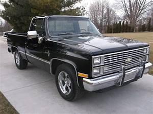 1984 Chevy Short Box  100  Original Rust Free Truck  The Motor Starts O For Sale In Mishawaka