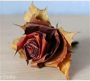 Comment Faire Secher Une Rose : comment faire une rose avec des feuilles d 39 automne le ~ Melissatoandfro.com Idées de Décoration