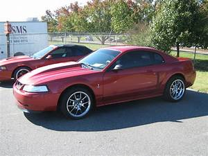 1999 Ford Mustang Cobra SVT related infomation,specifications - WeiLi Automotive Network