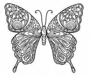Schmetterling, Ausmalbilder, Zum, Ausdrucken