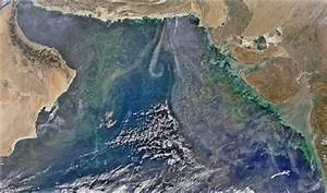 Spectacular Images Show Plankton Blooms In The Arabian Sea From Space