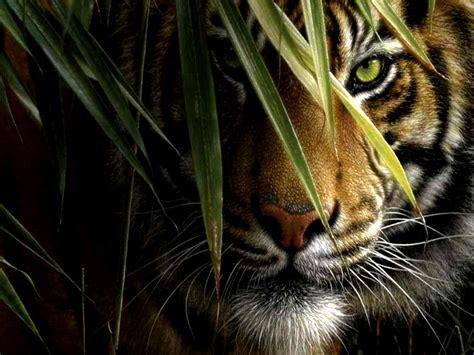 crouching tiger art id  art abyss