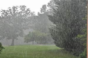 Rain and Floods | Weather Wiz Kids