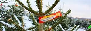 Schrebergarten München Kaufen : christbaum kaufen in m nchen bei christbaumdealer ~ Whattoseeinmadrid.com Haus und Dekorationen
