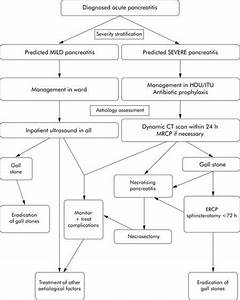 Algorithm acute pancreatitis management | RN | Pinterest ...