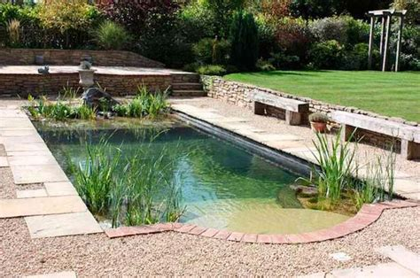 Natural Pool Design Ideas For Your Swimming Pool