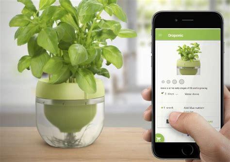 smart indoor herb gardens plant app