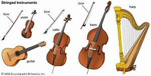 A Beginner U2019s Guide To Instruments Of The Orchestra