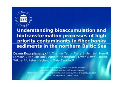 kupryianchyk understanding bioaccumulation