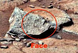 UFO SIGHTINGS DAILY: 100% Proof Of Small Animal On Mars ...