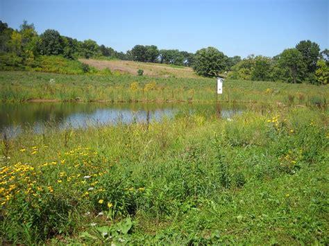 owen park ponds stormwater management engineering city of