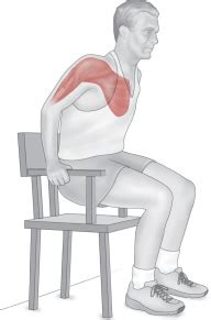 Chair Sit Ups Benefits by Power Provides Special Benefits For Muscles And