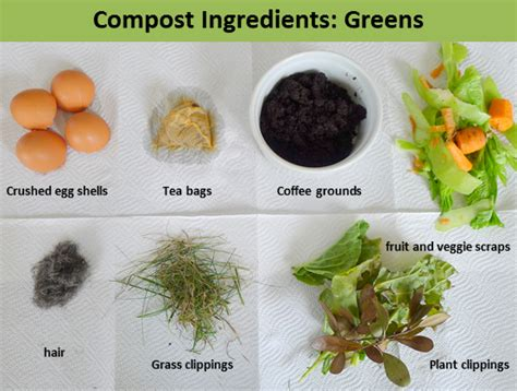 Less Noise, More Green: Urban composting: green and brown