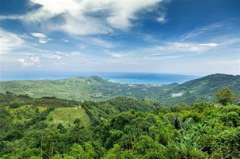 ma  shan country park biodiversity  wwf hk panda blog atwwf hong kong medium