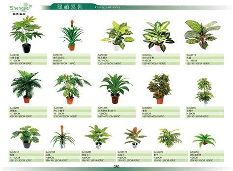 Garden Types : 2014 Mini Artificial Plant Home Indoor Decorative