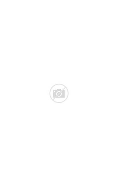 Kenya Kilimanjaro Places Mount Visit Sunset Africa