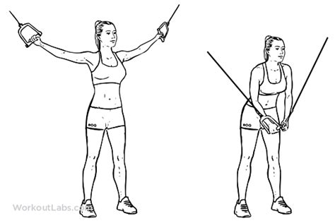 Pec Deck Flyes Cable Crossovers by Standing Cable Crossover Fly Illustrated Exercise