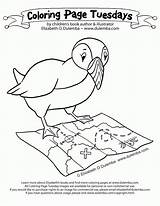 Coloring Puffin Pages Groundhog Coloringhome sketch template