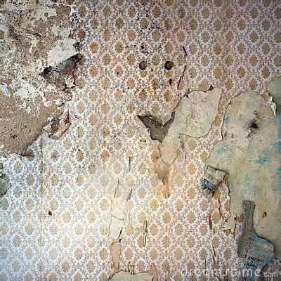peeling wallpaper damaged wal  view  dreamstime