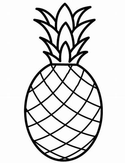Gambar Mewarnai Ananas Buah Nanas Putih Hitam