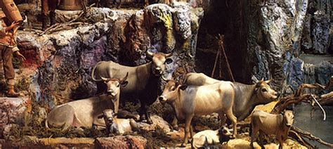 Versi Di Animali Da Cortile teresa sofia d auria