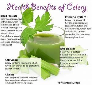 61 best Benefits of celery . images on Pinterest | Health ...
