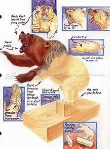 Carving Bear