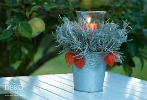 Welche Pflanzen Kann Man Im Herbst Pflanzen : diy h bsche herbst windlichter mit pflanzen deko kitchen ~ Articles-book.com Haus und Dekorationen