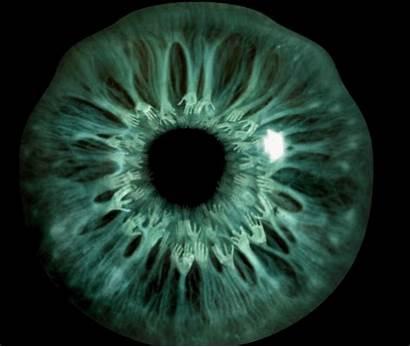 Eye Diseases Giphy Healthcare Names Medical Disease
