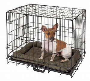 buy double door pet cage small at argoscouk your With best dog kennels to buy
