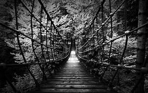 Monochrome Black White B  W Landscapes Nature Wood Rope