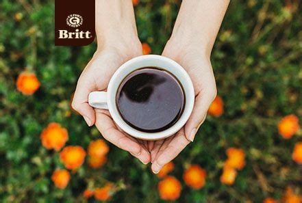 Found a great coffee machine or handy little tip to make a killer coffee? Pin by Cafe Britt on Summer | Summer recipes, Kitchen appliances, Coffee maker