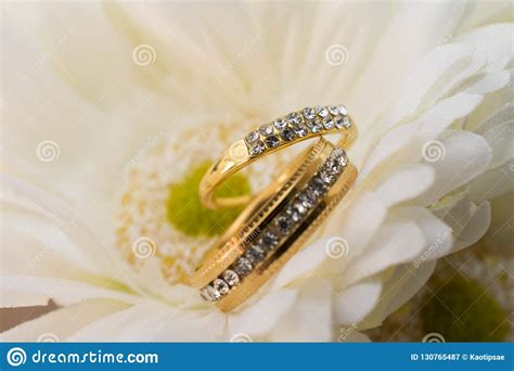 wedding rings in white flowers stock image image of gold holiday 130765487