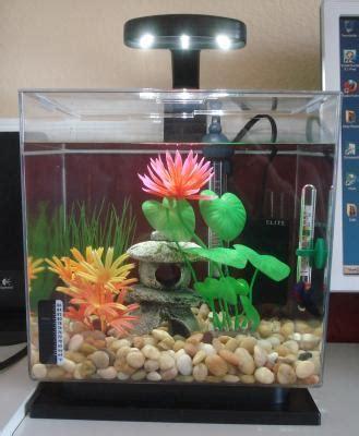 purchase  tetra led aquarium    walmartcom