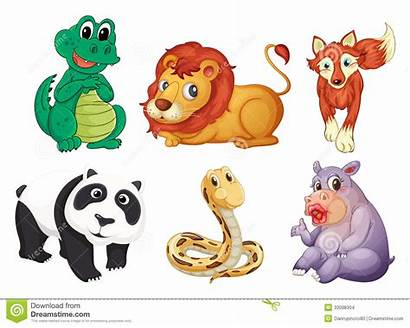 Animals Different Kinds Six Illustration Types Background