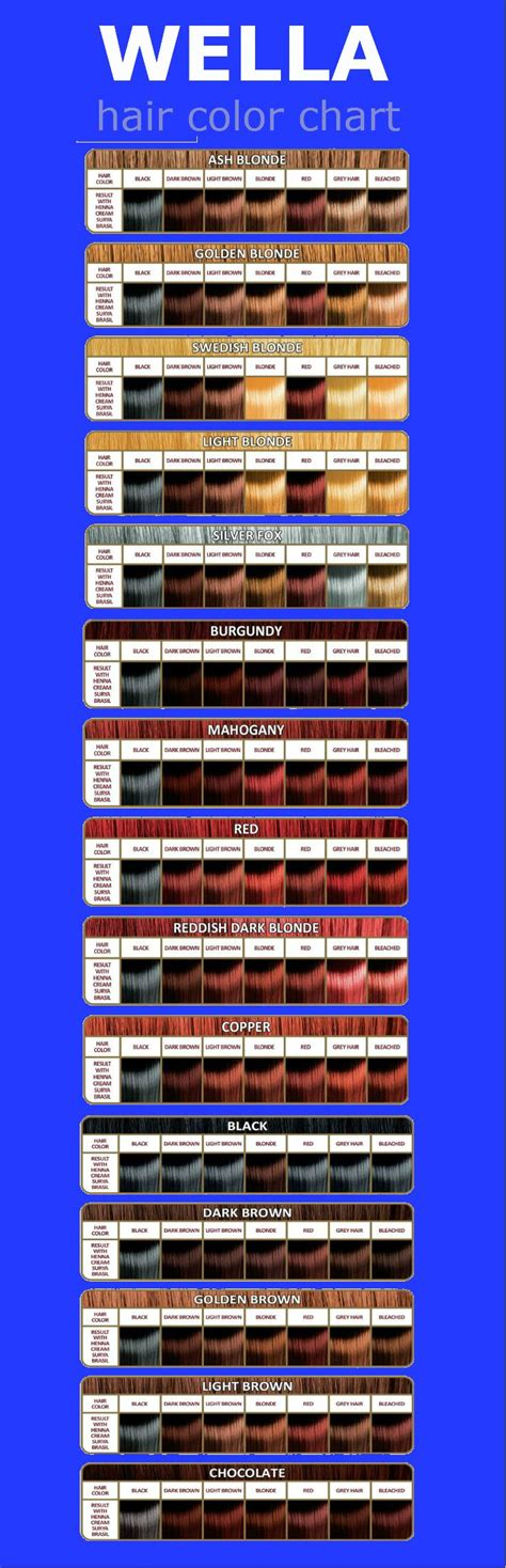 Hair Dye Colours Chart by Best 25 Hair Color Charts Ideas On Garnier