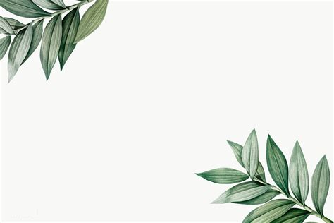 botanical themed design space royalty  stock