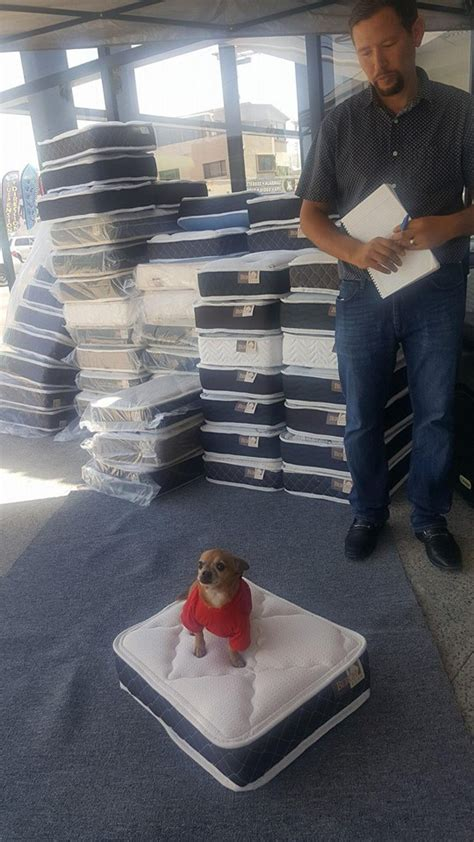 Mattress Purchase by Local Mattress Store Gives You A Mini Mattress For Your
