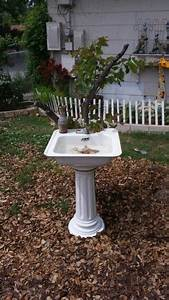 Made A Bird Bath Out Of An Old Sink From My House