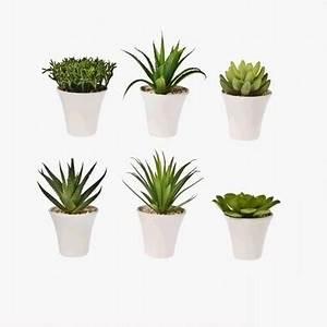 Plante Grasse Artificielle : plante artificielle succulentes ou plantes grasses d c ~ Teatrodelosmanantiales.com Idées de Décoration