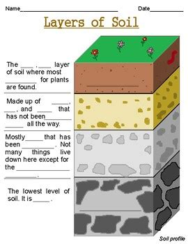 layers of soil worksheets by growing roots and building