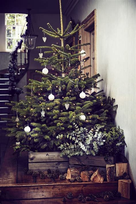 best real christmas trees by me 17 best ideas about real tree on decorations tree
